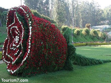 جاذبه های گردشگری طبیعی هند